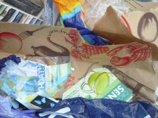 Plastic bag ban: to be or not to be?