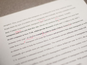 Grammar Nazis are a necessary evil when editing papers.